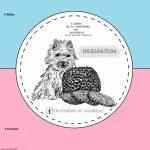 Vend chiots cairns terriers purs race